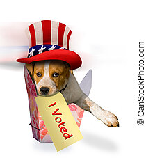 I voted. - Cute puppy that just voted.