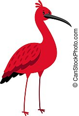 ibis, spotprent, vogel, rood, pictogram