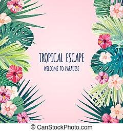 ibisco, esotico, quadrato, hawaiano, cartolina, reale, leaves., monstera, fiori, fondo., vettore, disegno, floreale, palma