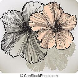 ibisco, fiore, illustration., vettore, azzurramento, hand-drawing.