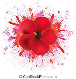 ibisco, fiori, goccia, rosso