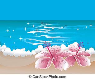 ibisco, fondo, paradiso