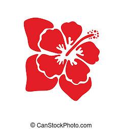 ibisco, vettore, fiore, illustrazione