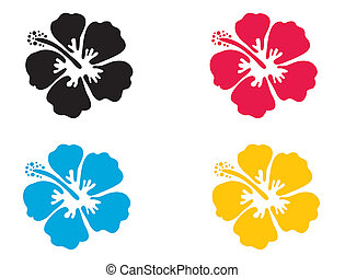 ibisco, vettore, illustration., flower.