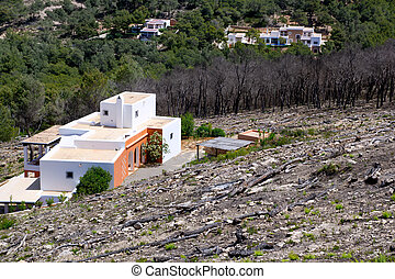 Ibiza after fire in spring 2011