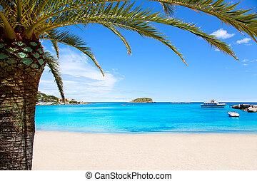 Ibiza Patja des Canar beach with turquoise water in Balearic...