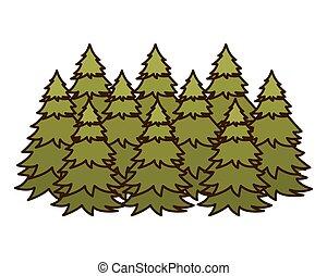 icône, arbres, pin, isolé