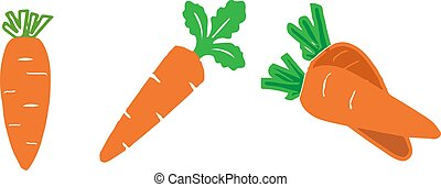 icône, carotte, fond, isolé, blanc
