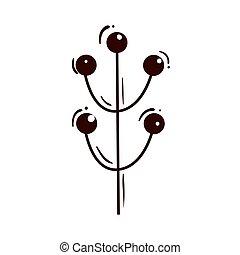icône, graines, isolé, branche