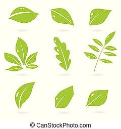 icône, isolé, feuilles, logos., vecteur, eco, leaves., divers, exotique, bio, ensemble, arbres, plants., éléments, résumé, arrière-plan., blanc, vert, formes