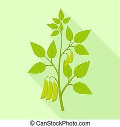 icône, plat, plante, style, graine soja