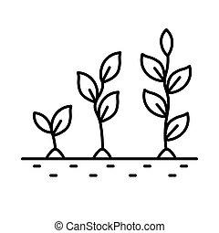 icône, pousse, étapes, isolé, fleur, croissance, plante, ligne