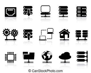icône, serveur, base données