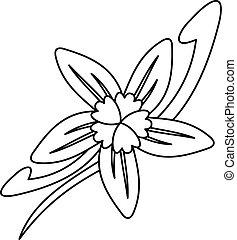 icône, vanille, fleur, style, contour