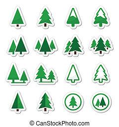 icônes, arbre, ensemble, vecteur, pin