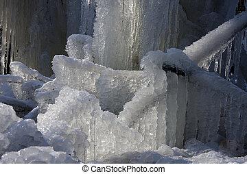 A frozen tree in winter