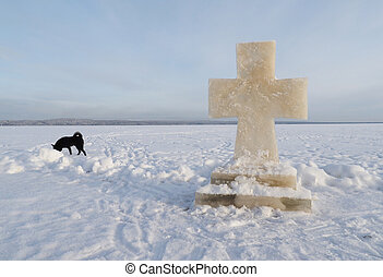 ice cross and dog on the lake