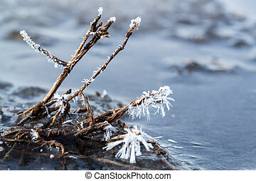 Ice Crystals in Closeup on Plant Stem