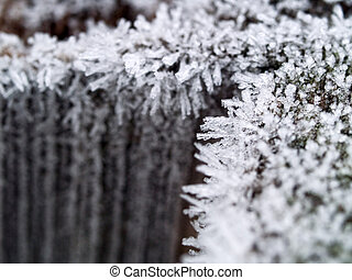 Ice Crystals on a Wooden Fence in the Early Morning With a Shallow Depth of Field