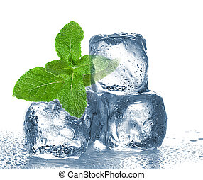 ice cubes and mint on white background.