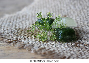 Ice cubes with parsley