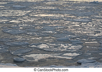 Ice field in the waters of Antarctica.