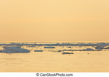 Ice Floating in Calm Sea