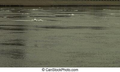 Ice floe floats in water
