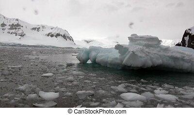 Ice floe in ocean of Antarctica. Glacier on background of...