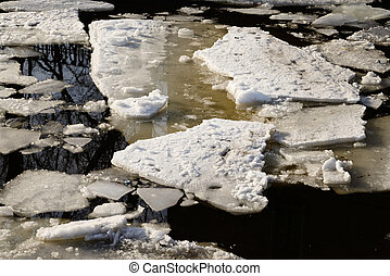 Ice floes on the water.