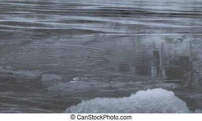 Ice floes on the water