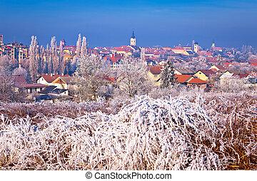 Ice frost winter view of Krizevci, town in Prigorje, Croatia