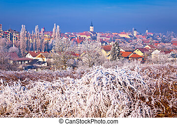 Ice frost winter view of Krizevci, town in Prigorje, Croatia