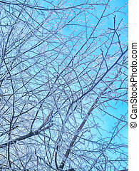 ice glass blue background
