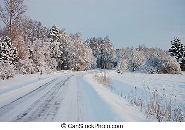 Ice-glazed road and snow covered forest in winter