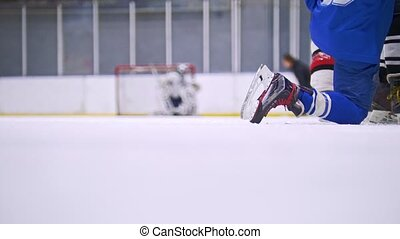 Ice hockey goalkeeper standing at the gate during a hockey...