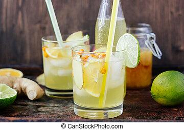 Ice lemonade with lime, lemon and ginger.