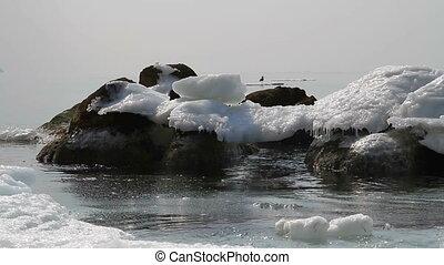 ice near the shore