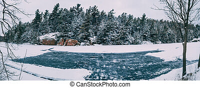 ice Rink on Lake with Trees