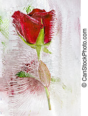 Ice sculpture with red roses