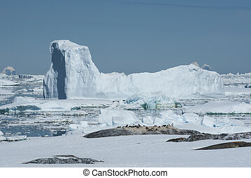 Iceberg in the Strait between the Antarctic Peninsula and the islands of the penguin colony