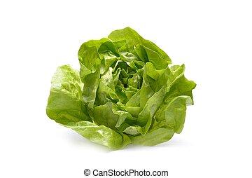 iceberg, salade, isolé, fond, frais, blanc