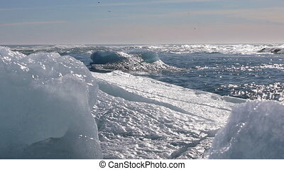 Icebergs drifting out to the ocean - Chunks of ice drifting...