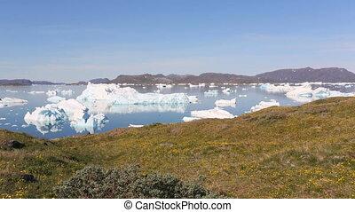 icebergs, narsaq, dehors