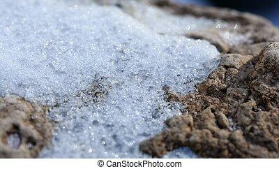 iced, detail., macro, neve, textura, branca