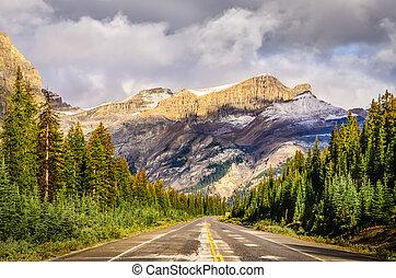 icefields, カナダ, 景色, ロッキーズ, パークウェイ, 道, 光景
