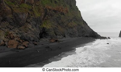 Iceland, 08/18/2012: aerial view the Reynisfjara black beach, ranked in 1991 as one of the 10 most beautiful non-tropical beaches in the world, in Vik i Myrdal, the southernmost village of the island