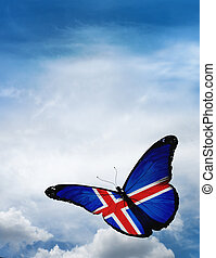 Iceland flag butterfly flying on sky background