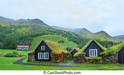 Iceland Tradition Houses - Skogar folk museum and iceland...