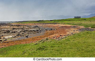 Icelandic landscape at low tide.